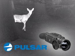 Angebote Pulsar
